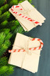 Christmas candy canes and letters for Santa,