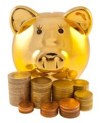 tirelire petit cochon doré et pièces d'euros