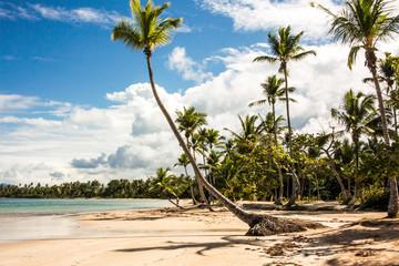 Tropical beach / Playa Bonita / Samana