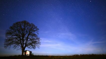 Landschaftsaufnahme in der Nacht