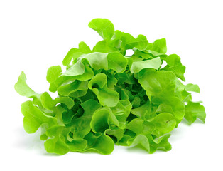 fresh green lettuce leaves isolated on white
