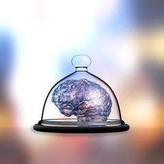 Gehirn - Tablett - GLasglocke