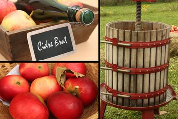 Cidre - Pressoir à cidre- Pommes à cidre