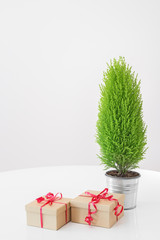 Little green tree and gifts with red ribbons