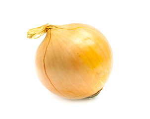 Fresh bulbs of onion not cleared on a white background