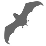 cartoon image of bat animal
