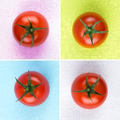 tomaten mit farbigen hintergrund