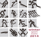 Winter sport icons