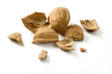 Broken shell of walnut