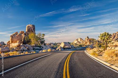 Joshua Tree National Park - 59459360