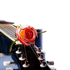 Guitar and rose.