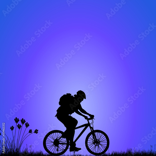 bike on the meadow