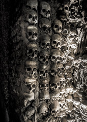 Wall full of skulls and bones