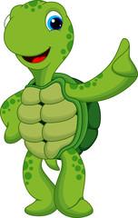 cute turtle thumbs