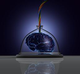 Gehirn - Tablett - Kabel