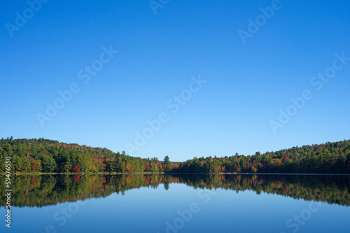 Forest reflection on the calm water of a lake