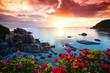 Leinwandbild Motiv Tranquil beach resort, beautiful morning glory on the Koh Samui,