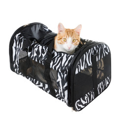 Cat surprise peeps  soft-sided carrier isolated on white backgro