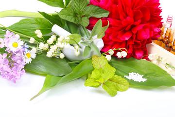 Heilkräuter, Heilpflanzen, Essenzen