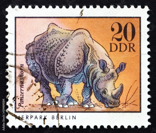 Postage stamp GDR 1975 Rhinoceros, Animal