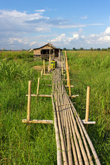 residential house on stilts with a bamboo pathway, Inle Lake