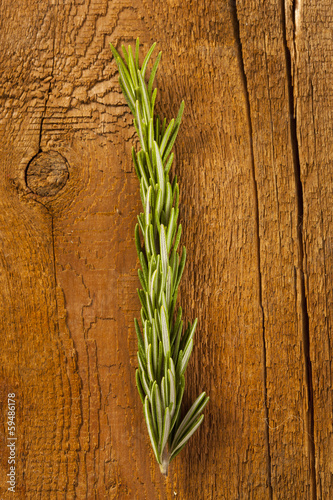 Fresh Organic Green Rosemary