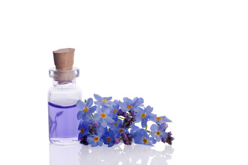 myosotis wildflower natural aromatherapy essence