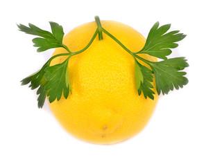 Lemon with parsley isolated on white background