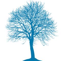 Baum mit Ästen
