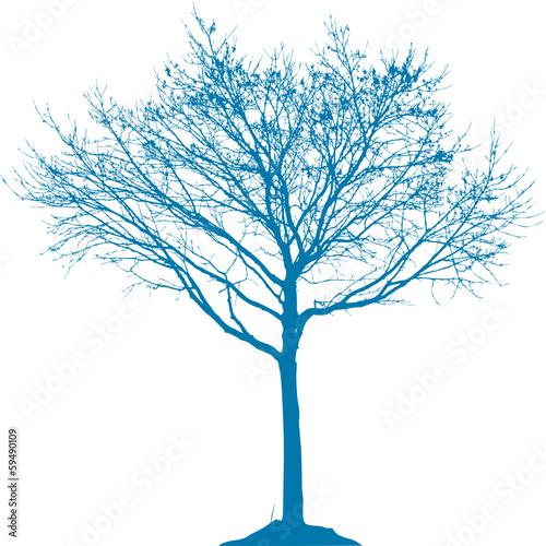 Baum mit Ästen - 59490109