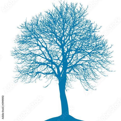 Baum mit Ästen - 59490112