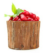 Fresh cornel berries in wooden vase, isolated on white