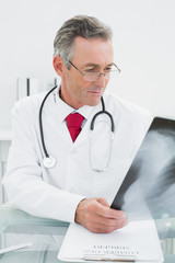 Doctor looking at x-ray picture of lungs in office