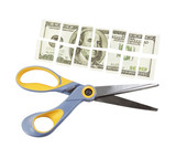 scissors cut a hundred dollar bill into many parts
