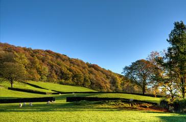 English rural scene in autumn