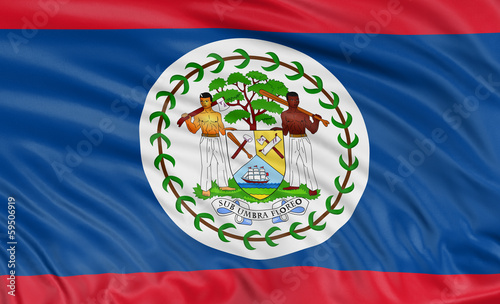 3D Belize flag