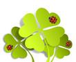 Marienkäfer Kleeblatt grün