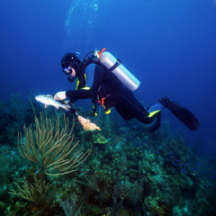 Scuba Diver Hunting Fishes