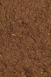 Peat Turf Macro Closeup, large detailed brown organic humus soil poster