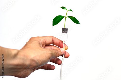 hand holding a usb cable with a small plant