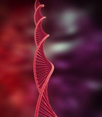 DNA R1