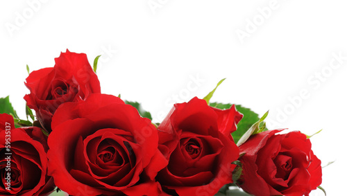 canvas print picture red roses