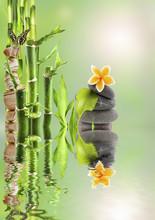 composition nature détente, bambou zen et galets