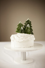 Christmas cake with decoration