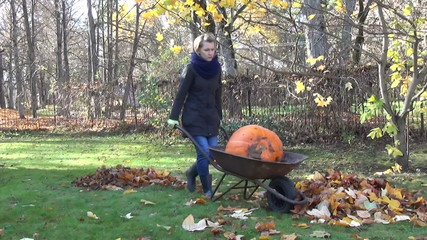 farmer girl carry orange pumpkin wheelbarrow through the yard