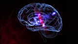 cerebro con neurotransmisores