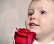 Adorable cherubic little boy with a red rose