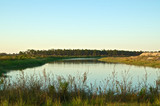swampland pond in rural florida