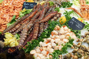 Fresh shrimps on fish market in France