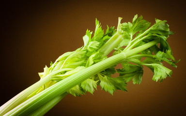 Organic celery. Stalk with leaves